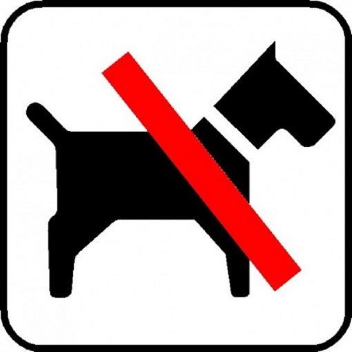 Piktogram hund forbudt