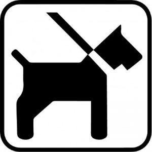 Piktogram hund i snor